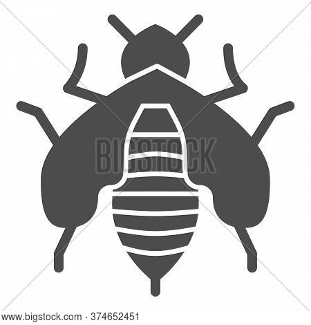 Bee Solid Icon, Honey Concept, Honey Bee Sign On White Background, Honeybee Icon In Glyph Style For