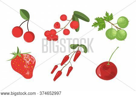 Set Of Vector Berries Isolated. Cherry, Cranberry, Gooseberry, Strawberry, Barberry. Flat Style.