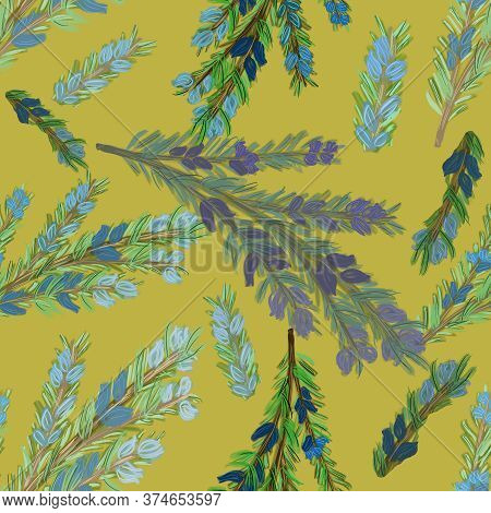 Branch Of Watercolor Rosemary With Blue Flowers And Needles On Mustard Yellow Background. Botany Sea