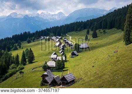 Zajamniki On A Plateau Pokljuka In Julian Alps, Triglav National Park, Slovenia