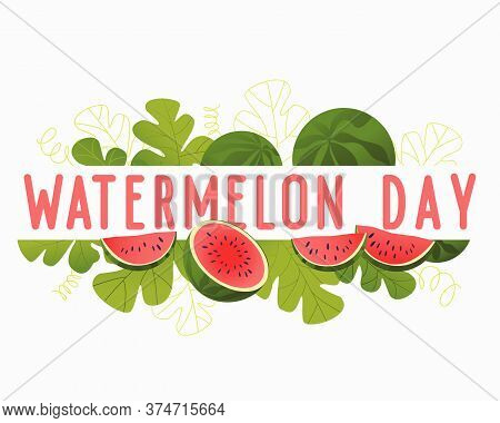 Attractive Illustration For Watermelon Day. Red Berry Closeup. Summer Card With Watermelon. Composit