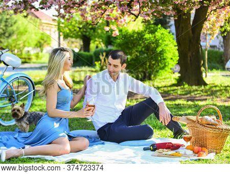 Cheers. Celebrate Anniversary. Couple Drinking Wine Sunny Day. Cute Couple Drinking Wine Picnic. Att