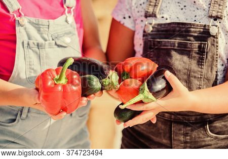Homegrown Organic Harvest Benefits. Grow Organic Crops. Community Gardens And Farms. Healthy Lifesty