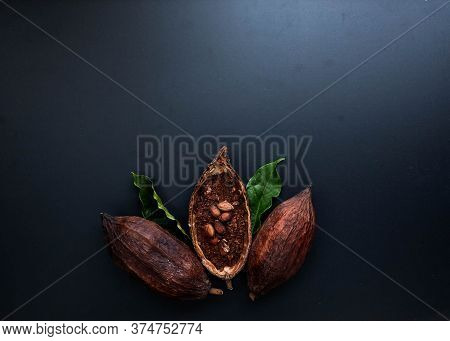 Composition With Cocoa Pod Black Texture Background