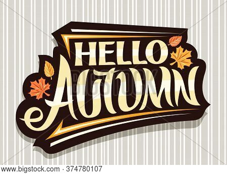 Vector Lettering Hello Autumn, Black Logo With Curly Calligraphic Font, Autumn Leaves And Decorative