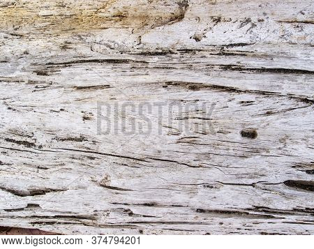 Faded Wooden Texture Closeup. Raw Timber With Grungy Cracks. Natural Surface For Vintage Background.