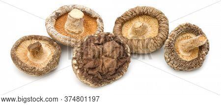 Dried Shiitake Mushroom isolated over white background