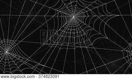 Spider Web Pattern Seamless. White Spider Web