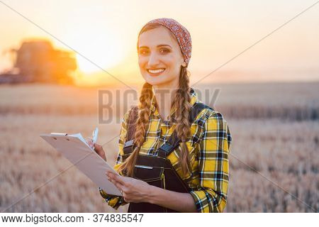 Farmer woman and combine harvester on wheat field during sunset