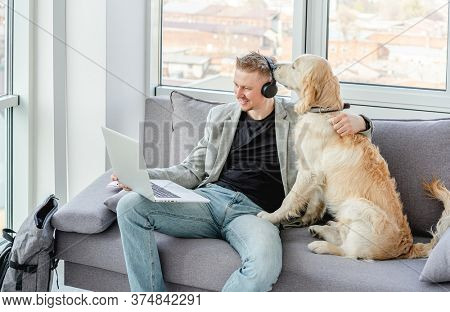Businessman teleworking on laptop next to cute dog
