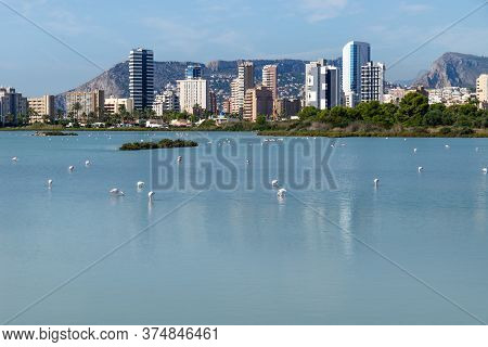 Flamingos In The Salt Lakes Called Las Salinas With Skyscrapers And Mountains In The Background Refl