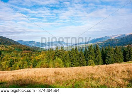 Autumn Morning In The Foggy Valley. Open View With Forest On The Meadow. Stunning Nature Scenery Of