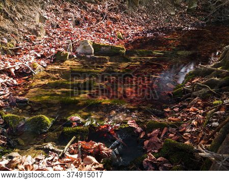 Scenic View Of Beautiful Nature, Mountain Stream In Forest, In Spring During Sunny Day. Underwater R