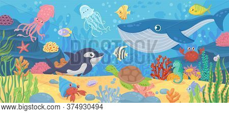 Underwater Ocean Life. Dolphin, Exotic Fishes And Crab, Squid. Bottom Seaweeds, Sea Turtle And Marin