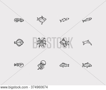 Fish Icons Set. Carp Fish And Fish Icons With Salmon, Sheatfish And Mullet. Set Of Fighting For Web