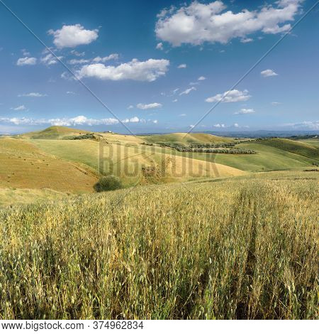 landscape of sicily beautiful countryside with wheat field
