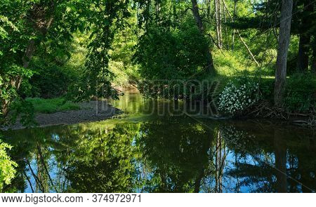 Early Morning Light Casts Beautiful Reflections On A Glassy Still Creek In Northeast Ohio