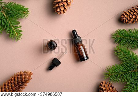 Flat Lay Composition With Dropper Bottles Of Conifer Essential Oil. Natural Organic Cosmetics With P