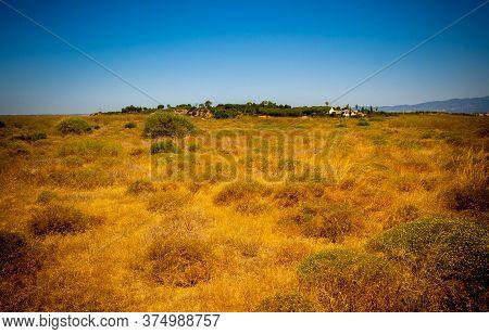 Land Under The Golden Sun In Alvor