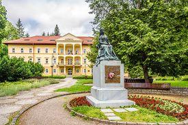 Bardejov,slovakia - June 10,2020 - Monument Of Sissi In The Streets Of Bardejovske Kupele. Bardejovs