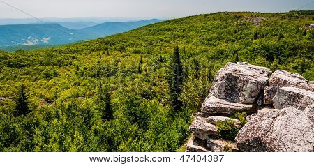 View East Of The Appalachians From Bear Rocks, In The High Allegheny Mountains Of Dollys Sods Wilder