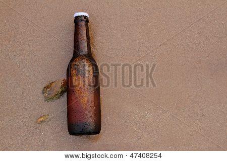 Beer Bottle On The Beach