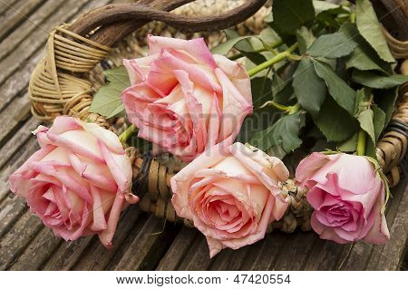 Four Roses In A Basket