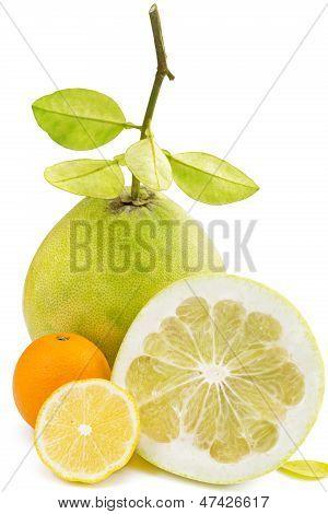 Fruta de pomelo con corte de limón y naranja, blanco
