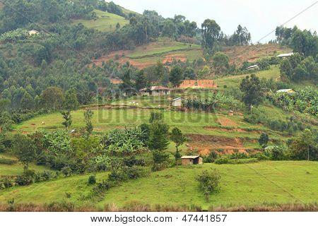 Rural Uganda