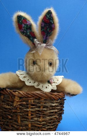 Bunny With Lace Collar