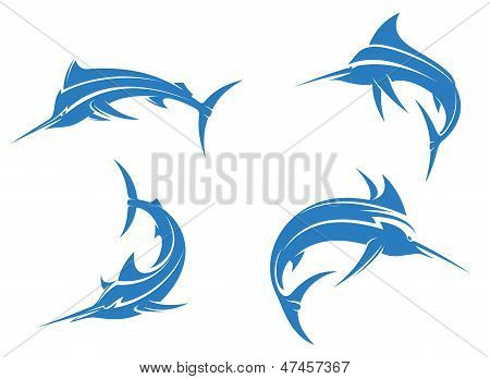 Big blue marlins
