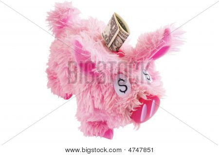 Pink Furry Piggy Bank Isolated On White Background