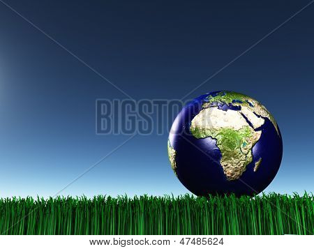 Africa on Grass