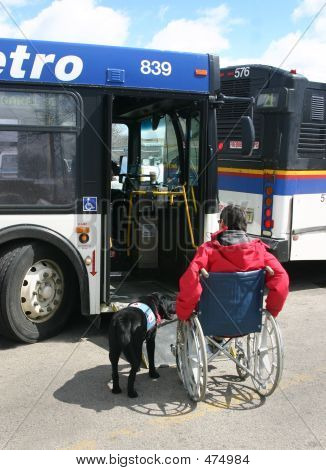 Wheelchair Boarding Bus