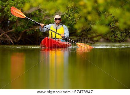 Man Kayaking In Florida
