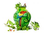Painted Vase with Parrot and Wild Berries on white background poster