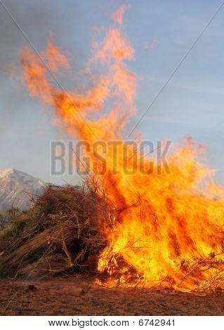 wildfire blaze