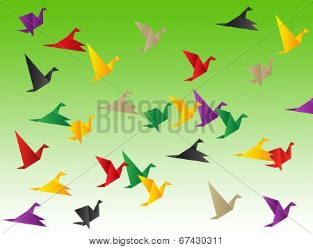 Birds Freedom Shows Break Out And Elude