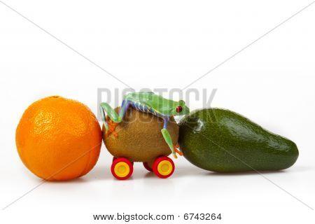 Fruit Frog!