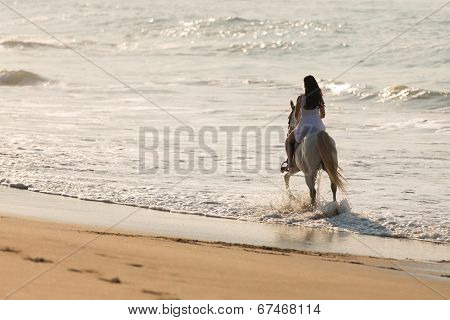 back view of young lady horse ride on the beach