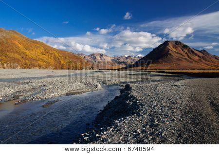 Denali National Park Toklat River