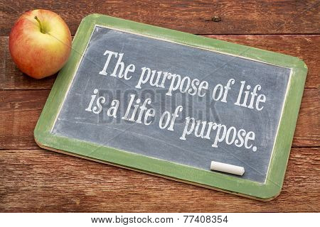 the purpose of life is a life of purpose - text   on a slate blackboard against red barn wood