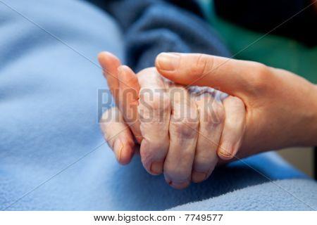 alter Hase Pflege älterer Menschen