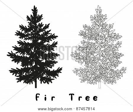 Christmas Tree Silhouette, Contours and Inscriptions