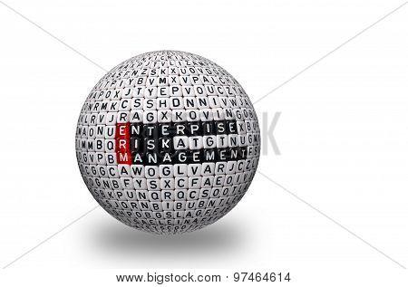 Erm Enterprise Risk Management 3D