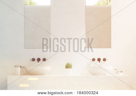 Close up of two bathroom sinks with mirrors hanging above them and a potted plant standing between them. 3d rendering toned image.