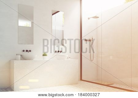 Side view of two bathroom sinks with mirrors hanging above them and a potted plant standing between them. 3d rendering toned image.