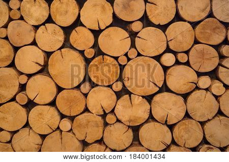 Closeup of logs of trees outdoor, pile of yellow round wood logs