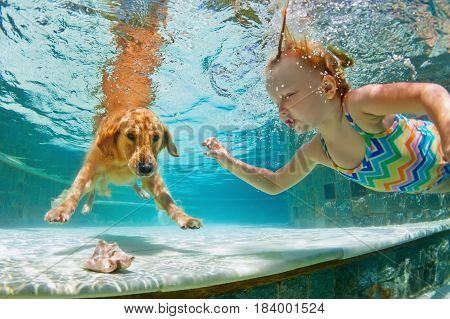 Underwater action. Smiley child play with fun training golden retriever puppy in swimming pool - jump and dive. Active water games with family pet popular dog breed like companion on summer vacation