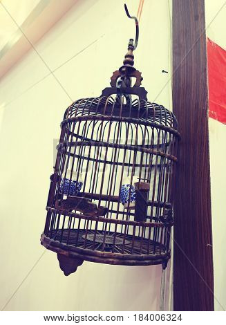 Birdcage hanging on